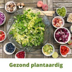 Gezond plantaardig